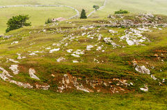 Grasslands in Cantabria Stock Photo
