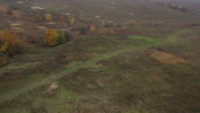 Grasslands dirt road trees Stock Image