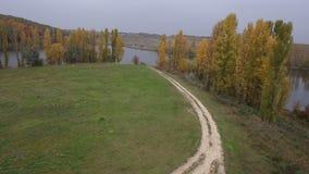 Grasslands dirt road trees Stock Images