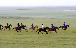 Grasslands on horse racing Royalty Free Stock Photography