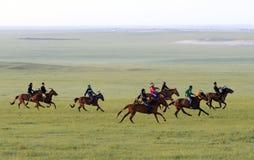 Grasslands on horse racing Stock Photos