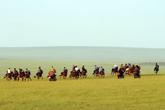 Grasslands on horse racing Stock Photos