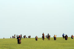 Grasslands on horse racing Stock Image