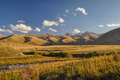 Grasslands in Kyrgyzstan Royalty Free Stock Images