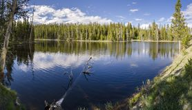 Grasslands, lakes and rivers in Yellowstone National Park. In Wyoming stock photo