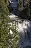 Grasslands, lakes and rivers in Yellowstone National Park. In Wyoming stock image