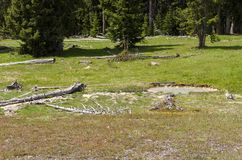 Grasslands, lakes and rivers in Yellowstone National Park. In Wyoming royalty free stock image