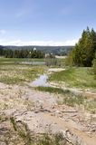Grasslands, lakes and rivers in Yellowstone National Park. In Wyoming royalty free stock photos