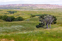 Vistas of Badlands National Park, USA Royalty Free Stock Photos