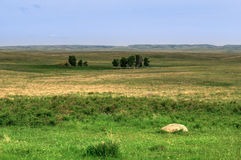Grasslands National Park Royalty Free Stock Photos