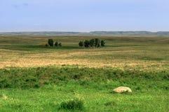 Grasslands National Park Royalty Free Stock Photos