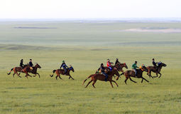 Free Grasslands On Horse Racing Stock Photos - 32395063