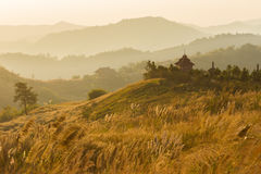Grasslands Sunrise Stock Photography