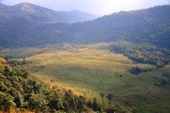 Grasslands. In the valleys of the Mon-jong mountain. Chiangmai, Thailand Stock Photos