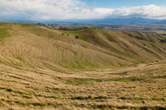 Grasslands at Wither Hills in New Zealand. Rolling hills with grassland in New Zealand Royalty Free Stock Image