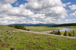 Grasslands in Yellowstone Stock Photos