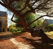 Grassmere churchyard Zdjęcie Stock