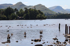 Grassmere Lake at Cumbria. Scenic view of the Lakes at Windermere Cumbria Stock Photos