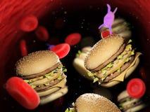 grasso nella circolazione sanguigna illustrazione vettoriale