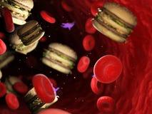 grasso nella circolazione sanguigna illustrazione di stock