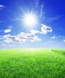 Grassonne und blauer Himmel Stockbild