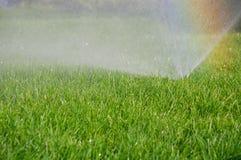 Grassprenger und -regenbogen Stockbilder