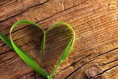 Grassprietje als hart Stock Fotografie