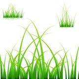 Grassprietjes stock illustratie