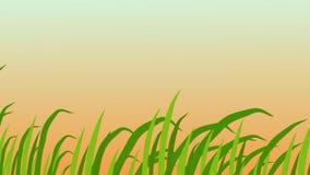 Grassprietjes die, in de wind, Mooie Zonsopgangachtergrond, 3d animatie slingeren vector illustratie