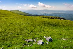 Grassy alpine meadow of Polonina Runa. Beautiful nature of Carpathian mountains in summertime royalty free stock photography