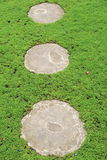 Grassy area with three cement stepping stones. Grassy area of backyard garden, with three cement stepping stones Royalty Free Stock Images