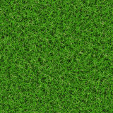 Grassy background Stock Images
