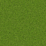 Grassy background Royalty Free Stock Images