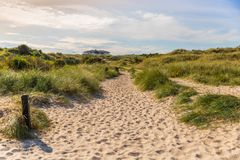 Grassy beach landscape. Grassy sand dune on a beach at the north sea Stock Photo