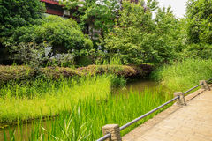 Grassy brook before Chinese traditional houses in sunny summer a Stock Photography