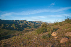 Grassy California Hillside Royalty Free Stock Images