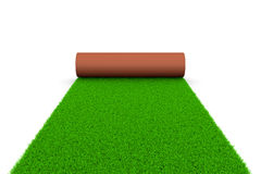 Grassy Carpet Royalty Free Stock Image