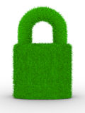 Grassy closed lock on white background Stock Image