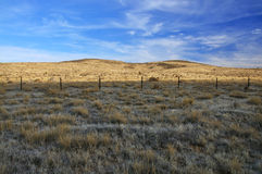 Grassy desert landscape Royalty Free Stock Photography