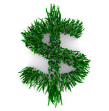 Grassy Dollar Sign Royalty Free Stock Photo