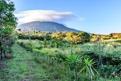 Grassy farm trail leads up overgrown volcano slope, Guatemala, Central America. Grassy farm trail leads up overgrown slope of Agua volcano in countryside near royalty free stock photo