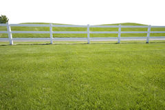 Grassy Fence Extended Foreground. A grassy hill with fence and tree isolated on a white background Royalty Free Stock Photos