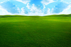 Grassy field. Green grassy meadow with beautiful clouds and sky Stock Photos