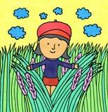 Grassy field Stock Image