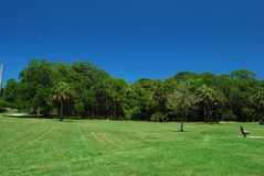 Grassy field with blue skies in a nature preserve in Sarasota Florida. A nature preserve in Florida with trees and a blue skies Stock Photo