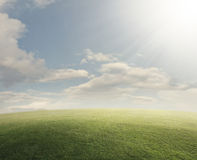 Grassy field with bright sun Stock Images