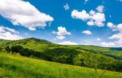 Grassy fields at the foot of Pikui mountain. Lovely countryside landscape on a beautiful summer day Royalty Free Stock Photography