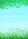 Grassy floral natural background royalty free illustration