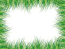 Grassy frame illustration Royalty Free Stock Photography