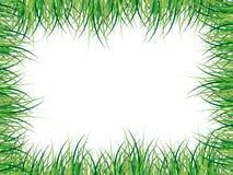 Grassy frame illustration Royalty Free Stock Photography